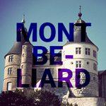Logo du groupe Montbeliard